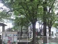 高円寺 公園